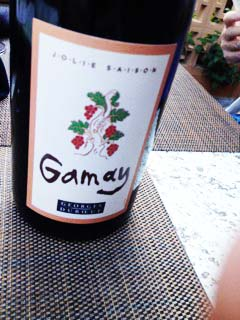 Gamay2
